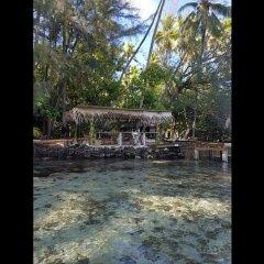 Отель Motu Mapeti - Tahiti Private Island фото 14