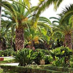 Отель Sofitel Rabat Jardin des Roses Марокко, Рабат - отзывы, цены и фото номеров - забронировать отель Sofitel Rabat Jardin des Roses онлайн
