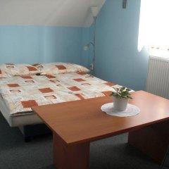 Отель Pension Olga Лиса-над-Лабем комната для гостей фото 2