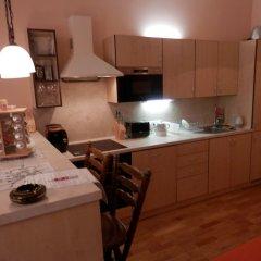 Отель Apartmán U Gejzíru в номере фото 2