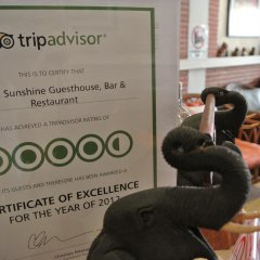 Отель Karon Sunshine Guesthouse & Bar интерьер отеля фото 3
