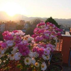 Отель Nepal Apartment Непал, Катманду - отзывы, цены и фото номеров - забронировать отель Nepal Apartment онлайн фото 3