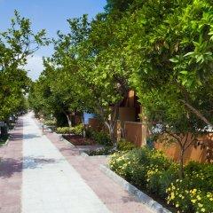 Hotel Ozlem Garden - All Inclusive фото 20