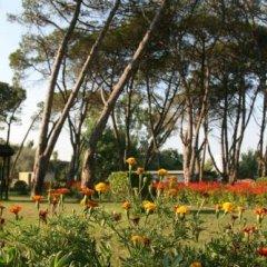 Отель Tropikal Resort Албания, Дуррес - отзывы, цены и фото номеров - забронировать отель Tropikal Resort онлайн детские мероприятия фото 2