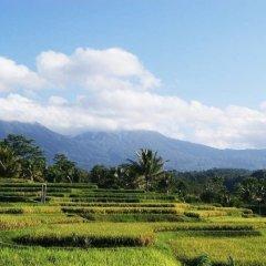 Отель Ti Amo Bali Resort фото 5