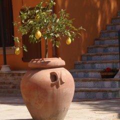 Отель Casa la Concia Потенца-Пичена с домашними животными