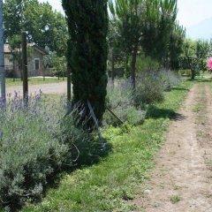 Отель Azienda Agrituristica Vivi Natura Италия, Помпеи - отзывы, цены и фото номеров - забронировать отель Azienda Agrituristica Vivi Natura онлайн фото 15