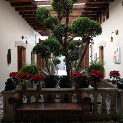 Отель Casa Aldama Мексика, Мехико - отзывы, цены и фото номеров - забронировать отель Casa Aldama онлайн фото 6