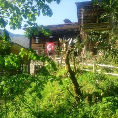 Отель Demircioglu Ortan Köyü Konagi фото 6