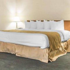 Отель Quality Inn & Suites & Conference Centre Канада, Гатино - отзывы, цены и фото номеров - забронировать отель Quality Inn & Suites & Conference Centre онлайн комната для гостей фото 3