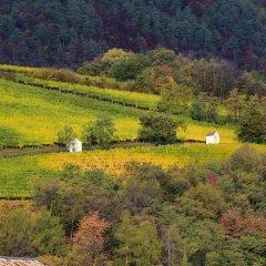 Отель Angerburg Blumenhotel Аппиано-сулла-Страда-дель-Вино приотельная территория