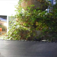 Отель Vera Италия, Риччоне - отзывы, цены и фото номеров - забронировать отель Vera онлайн фото 14