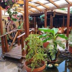 Отель Apart Болгария, Поморие - отзывы, цены и фото номеров - забронировать отель Apart онлайн фото 2