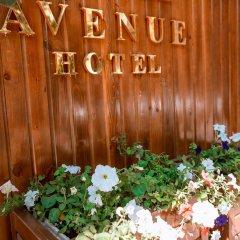 Отель Avenue Кыргызстан, Бишкек - отзывы, цены и фото номеров - забронировать отель Avenue онлайн помещение для мероприятий