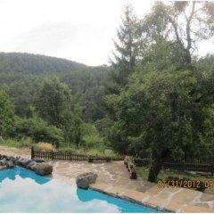 Отель Parlapanova Guest House - Pool Access Боженци бассейн фото 2