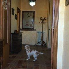 Отель Casa Rural Tía Carmen с домашними животными