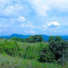 Отель Kandyan View Holiday Канди приотельная территория