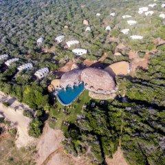 Отель Wild Coast Tented Lodge - All Inclusive Шри-Ланка, Тиссамахарама - отзывы, цены и фото номеров - забронировать отель Wild Coast Tented Lodge - All Inclusive онлайн фото 10