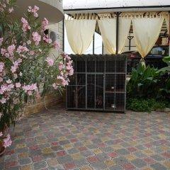 Гостиница Guest house Viktoriya в Сочи 1 отзыв об отеле, цены и фото номеров - забронировать гостиницу Guest house Viktoriya онлайн фото 4