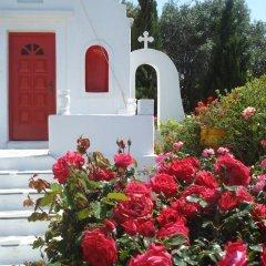 Sun of Mykonos Studios in Ornos, Greece from 132$, photos, reviews - zenhotels.com photo 8