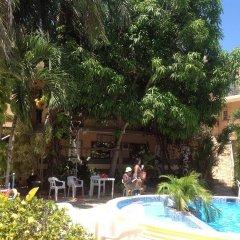 Отель Mango Доминикана, Бока Чика - отзывы, цены и фото номеров - забронировать отель Mango онлайн бассейн фото 3