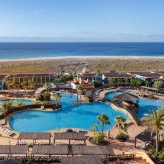 Отель Occidental Jandía Playa Испания, Джандия-Бич - отзывы, цены и фото номеров - забронировать отель Occidental Jandía Playa онлайн фото 7