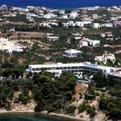 Отель Danae Hotel Греция, Эгина - отзывы, цены и фото номеров - забронировать отель Danae Hotel онлайн фото 4