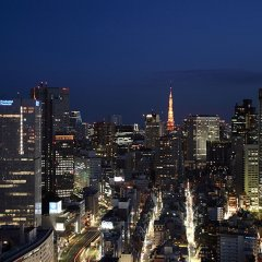 Отель New Otani (Garden Tower Wing) Токио приотельная территория фото 2