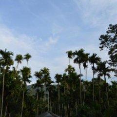 Отель Green Valley Holiday Inn Шри-Ланка, Бандаравела - отзывы, цены и фото номеров - забронировать отель Green Valley Holiday Inn онлайн фото 18