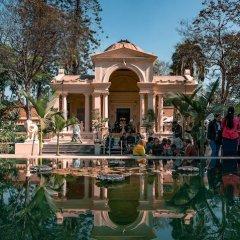 Отель Potala Непал, Катманду - отзывы, цены и фото номеров - забронировать отель Potala онлайн приотельная территория фото 2