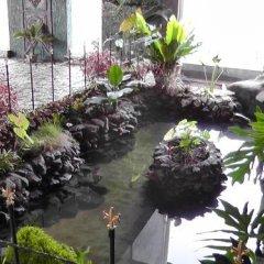 Отель Manikgoda Tea Paradise фото 18