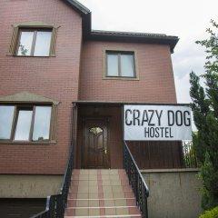 Crazy Dog Hostel фото 3