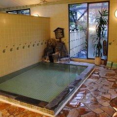 Отель Ryokan Hana to Nagomi No Yado Sankouen Минамиогуни бассейн
