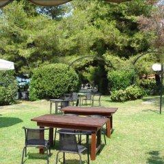 Отель Para Thin Alos Греция, Ситония - отзывы, цены и фото номеров - забронировать отель Para Thin Alos онлайн фото 28