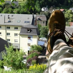 Hotel aux Bruyeres фото 3