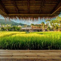 Отель Naina Resort & Spa фото 14