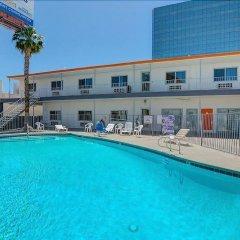 Отель Siegel Select Convention Center США, Лас-Вегас - отзывы, цены и фото номеров - забронировать отель Siegel Select Convention Center онлайн бассейн фото 3