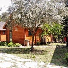 Olympos Village Ecologic Activity Hotel Кемер фото 8