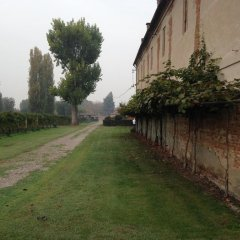 Отель Agriturismo Dominio di Bagnoli фото 5