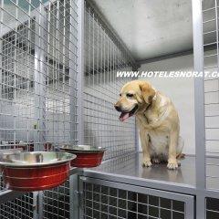 Отель Spa Norat O Grove Эль-Грове с домашними животными