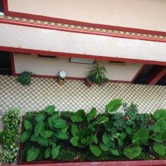 Отель Gallo Rubio Мексика, Гвадалахара - отзывы, цены и фото номеров - забронировать отель Gallo Rubio онлайн балкон