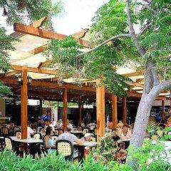 Pavlo Napa Beach Hotel in Ayia Napa, Cyprus from 144$, photos, reviews - zenhotels.com photo 2