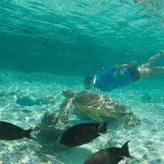 Отель Le Meridien Bora Bora пляж