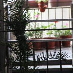 Гостиница Гостевой дом Маринка в Сочи отзывы, цены и фото номеров - забронировать гостиницу Гостевой дом Маринка онлайн фото 10