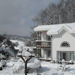 Отель Swiss Pension Южная Корея, Пхёнчан - отзывы, цены и фото номеров - забронировать отель Swiss Pension онлайн фото 4