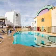 Отель Siegel Select Convention Center США, Лас-Вегас - отзывы, цены и фото номеров - забронировать отель Siegel Select Convention Center онлайн бассейн фото 2