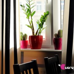 Very Berry Hostel удобства в номере