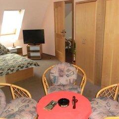 Отель Pension Panorama Карловы Вары удобства в номере