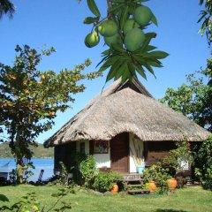 Отель Bora Bora Bungalove Французская Полинезия, Бора-Бора - отзывы, цены и фото номеров - забронировать отель Bora Bora Bungalove онлайн фото 7