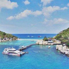Отель Nangyuan Island Dive Resort Таиланд, о. Нангьян - отзывы, цены и фото номеров - забронировать отель Nangyuan Island Dive Resort онлайн бассейн
